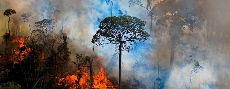 Clima y Medio Ambiente